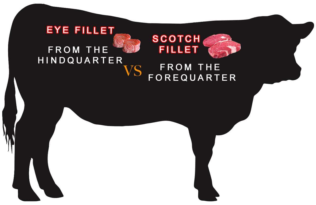 Scotch fillet vs eye fillet the perfect steak co scotch fillet vs eye fillet pooptronica