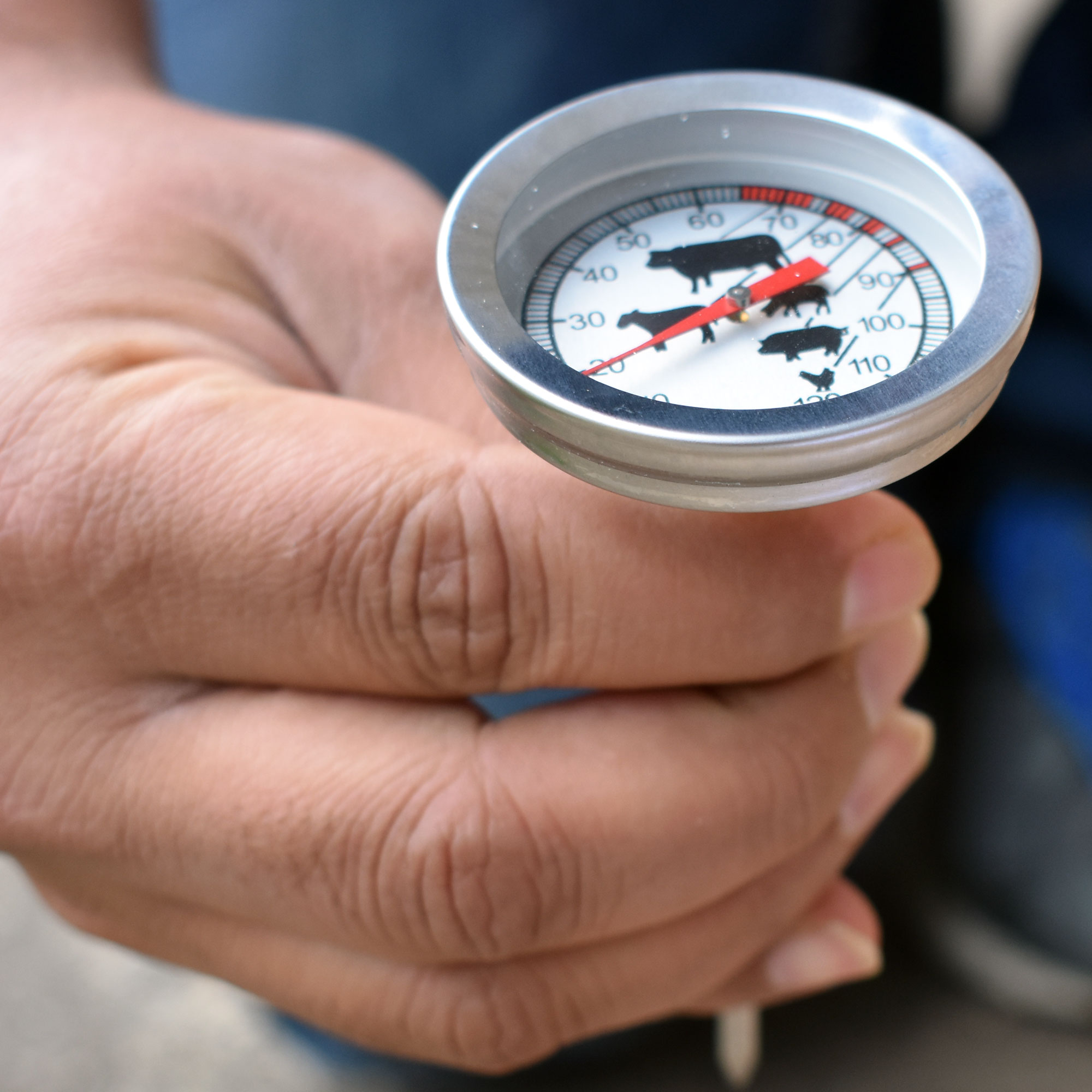 Pocket-Thermometer5